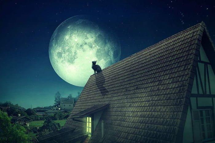 Луна в ведической астрологии. Запись вебинара