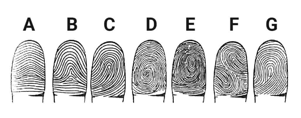 любовная совместимость по отпечаткам пальцев